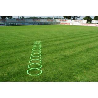 Escala de agilidade octogonal Lynx Sport